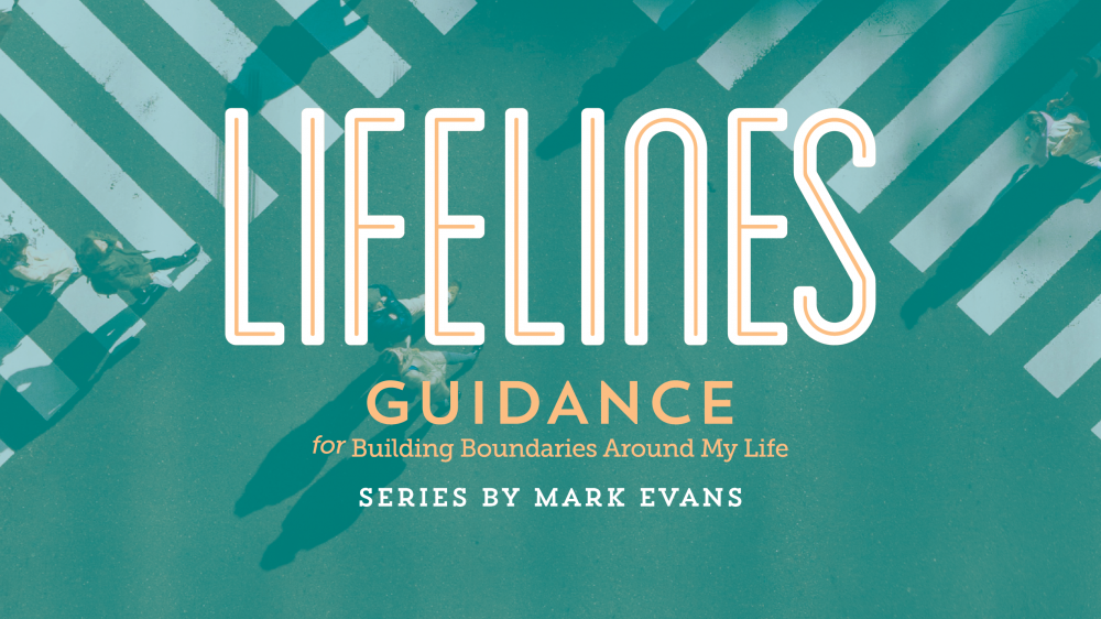 Lifelines Revisited